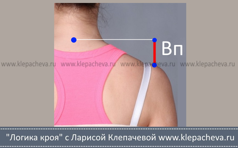 как измерить высоту плеч